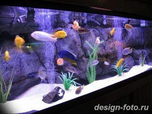 фото Аквариум в интерьере 28.11.2018 №114 - photo Aquarium in the interior - design-foto.ru