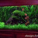 фото Аквариум в интерьере 28.11.2018 №116 - photo Aquarium in the interior - design-foto.ru