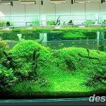 фото Аквариум в интерьере 28.11.2018 №119 - photo Aquarium in the interior - design-foto.ru