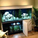 фото Аквариум в интерьере 28.11.2018 №126 - photo Aquarium in the interior - design-foto.ru