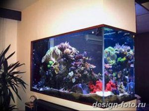 фото Аквариум в интерьере 28.11.2018 №127 - photo Aquarium in the interior - design-foto.ru
