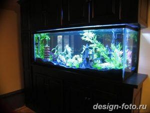 фото Аквариум в интерьере 28.11.2018 №132 - photo Aquarium in the interior - design-foto.ru