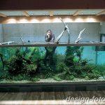 фото Аквариум в интерьере 28.11.2018 №133 - photo Aquarium in the interior - design-foto.ru