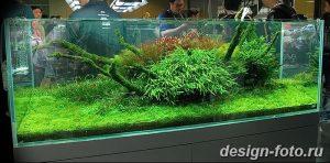 фото Аквариум в интерьере 28.11.2018 №134 - photo Aquarium in the interior - design-foto.ru