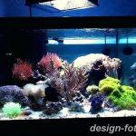 фото Аквариум в интерьере 28.11.2018 №139 - photo Aquarium in the interior - design-foto.ru