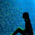 фото Аквариум в интерьере 28.11.2018 №144 - photo Aquarium in the interior - design-foto.ru