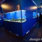 фото Аквариум в интерьере 28.11.2018 №146 - photo Aquarium in the interior - design-foto.ru