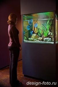 фото Аквариум в интерьере 28.11.2018 №164 - photo Aquarium in the interior - design-foto.ru