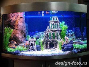 фото Аквариум в интерьере 28.11.2018 №176 - photo Aquarium in the interior - design-foto.ru