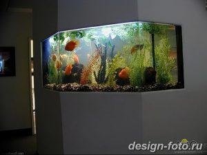 фото Аквариум в интерьере 28.11.2018 №186 - photo Aquarium in the interior - design-foto.ru
