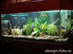фото Аквариум в интерьере 28.11.2018 №189 - photo Aquarium in the interior - design-foto.ru