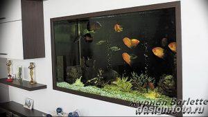 фото Аквариум в интерьере 28.11.2018 №197 - photo Aquarium in the interior - design-foto.ru