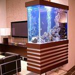 фото Аквариум в интерьере 28.11.2018 №218 - photo Aquarium in the interior - design-foto.ru