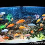 фото Аквариум в интерьере 28.11.2018 №220 - photo Aquarium in the interior - design-foto.ru