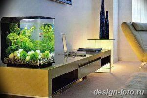 фото Аквариум в интерьере 28.11.2018 №226 - photo Aquarium in the interior - design-foto.ru
