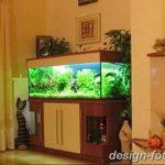фото Аквариум в интерьере 28.11.2018 №245 - photo Aquarium in the interior - design-foto.ru