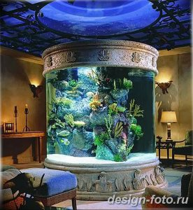фото Аквариум в интерьере 28.11.2018 №258 - photo Aquarium in the interior - design-foto.ru