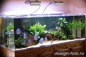 фото Аквариум в интерьере 28.11.2018 №267 - photo Aquarium in the interior - design-foto.ru