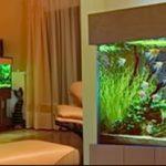 фото Аквариум в интерьере 28.11.2018 №294 - photo Aquarium in the interior - design-foto.ru