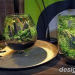 фото Аквариум в интерьере 28.11.2018 №310 - photo Aquarium in the interior - design-foto.ru
