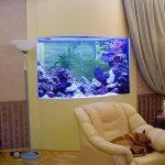 фото Аквариум в интерьере 28.11.2018 №319 - photo Aquarium in the interior - design-foto.ru