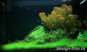 фото Аквариум в интерьере 28.11.2018 №322 - photo Aquarium in the interior - design-foto.ru