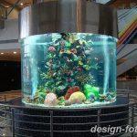 фото Аквариум в интерьере 28.11.2018 №342 - photo Aquarium in the interior - design-foto.ru