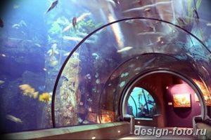 фото Аквариум в интерьере 28.11.2018 №358 - photo Aquarium in the interior - design-foto.ru