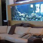 фото Аквариум в интерьере 28.11.2018 №397 - photo Aquarium in the interior - design-foto.ru