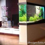 фото Аквариум в интерьере 28.11.2018 №401 - photo Aquarium in the interior - design-foto.ru