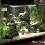 фото Аквариум в интерьере 28.11.2018 №404 - photo Aquarium in the interior - design-foto.ru