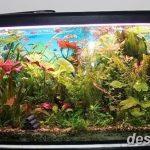 фото Аквариум в интерьере 28.11.2018 №414 - photo Aquarium in the interior - design-foto.ru