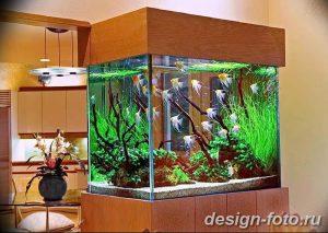 фото Аквариум в интерьере 28.11.2018 №416 - photo Aquarium in the interior - design-foto.ru