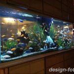 фото Аквариум в интерьере 28.11.2018 №438 - photo Aquarium in the interior - design-foto.ru
