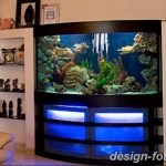 фото Аквариум в интерьере 28.11.2018 №448 - photo Aquarium in the interior - design-foto.ru