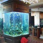фото Аквариум в интерьере 28.11.2018 №459 - photo Aquarium in the interior - design-foto.ru