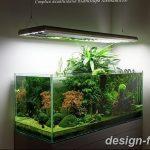 фото Аквариум в интерьере 28.11.2018 №463 - photo Aquarium in the interior - design-foto.ru