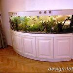фото Аквариум в интерьере 28.11.2018 №469 - photo Aquarium in the interior - design-foto.ru