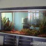 фото Аквариум в интерьере 28.11.2018 №473 - photo Aquarium in the interior - design-foto.ru