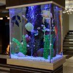 фото Аквариум в интерьере 28.11.2018 №482 - photo Aquarium in the interior - design-foto.ru