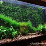 фото Аквариум в интерьере 28.11.2018 №483 - photo Aquarium in the interior - design-foto.ru