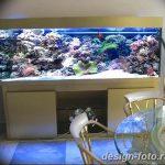 фото Аквариум в интерьере 28.11.2018 №507 - photo Aquarium in the interior - design-foto.ru