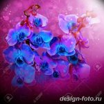 Beautiful flowers blue orchids,