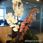 фото Орхидеи в интерьере 28.11.2018 №016 - photo Orchids in the interior - design-foto.ru