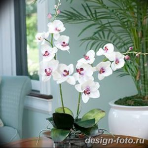 фото Орхидеи в интерьере 28.11.2018 №017 - photo Orchids in the interior - design-foto.ru