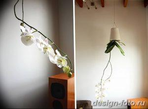 фото Орхидеи в интерьере 28.11.2018 №029 - photo Orchids in the interior - design-foto.ru