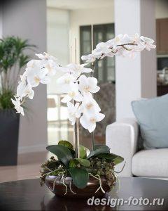 фото Орхидеи в интерьере 28.11.2018 №033 - photo Orchids in the interior - design-foto.ru