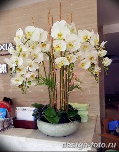 фото Орхидеи в интерьере 28.11.2018 №037 - photo Orchids in the interior - design-foto.ru