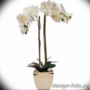 фото Орхидеи в интерьере 28.11.2018 №038 - photo Orchids in the interior - design-foto.ru