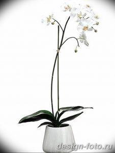 фото Орхидеи в интерьере 28.11.2018 №039 - photo Orchids in the interior - design-foto.ru